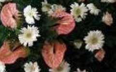 fiorista on line